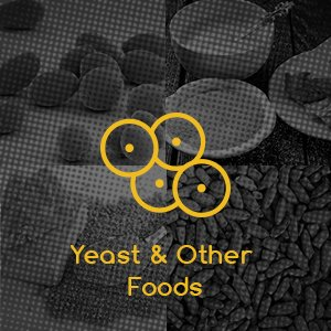 Yeast & Other Foods